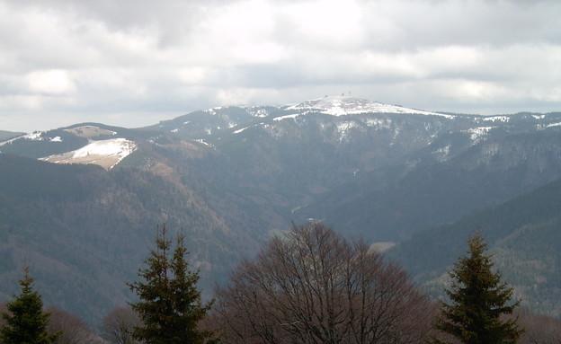היער השחור (צילום: Arminia. מתוך ויקיפדיה)