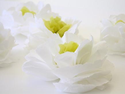 קישוטי סוכות, פרחי קיר מתוך Dana Willard