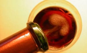כוס יין אדום (צילום: jupiter images)