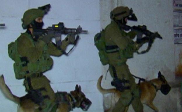 עוקץ, חיילים, כלבים (צילום: חדשות 2)