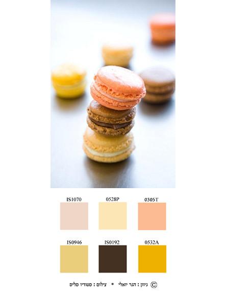 צבע ואוכל, מקרונים (צילום: סטודיו סליס )