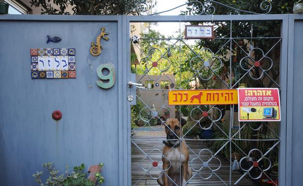 שדרוגים, שער כניסה לבית ששודרג עם אריחים, לפני, עי (צילום: ניר בלז)