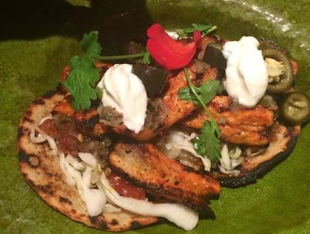 מסעדת אואזיס טורטיה