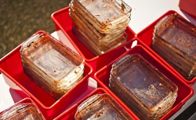 מסיבת לזניה - כלים (צילום: זיו שדה)