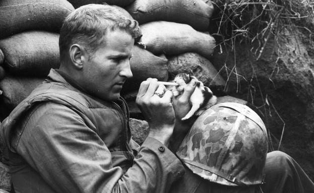 חייל מאכיל חתלתול (צילום: Sgt Martin Riley, GettyImages IL)