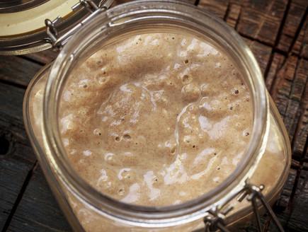מחמצת (צילום: אפיק גבאי, לאפות, לבשל, לאהוב)