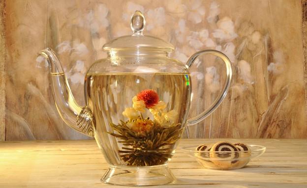 חורף, ספייסז, קומקום זכוכית, 70-120 שקלים. צילום-T (צילום: -Tea-Shape_studio)