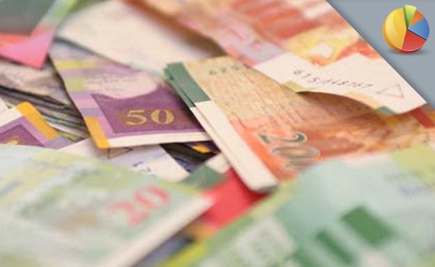 שטרות כסף לסקר (צילום: חדשות 2)