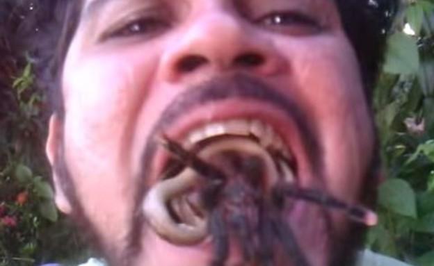 נחש ועכביש בפה (צילום: יוטיוב)
