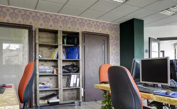 שני רינג, משרדי Veribo. צילום אדריאן דודה (2) (צילום: אדריאן דודה)