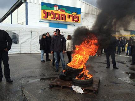 מאבק המחאה של עובדי