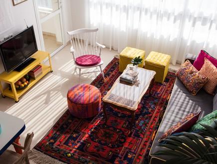 דירה סטפני גריב, טלוויזיה (צילום: יוראי ליברמן)