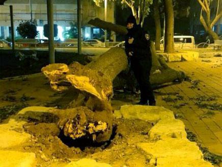 """ראשל""""צ, אמש (צילום: דוברות עיריית ראשון לציון)"""