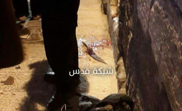 פיגוע דקירה בירושלים (צילום: חדשות 2)