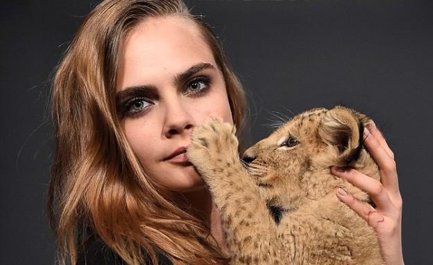 קארה דלווין ואריה (צילום: אימג'בנק/GettyImages)
