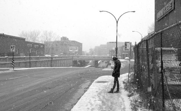 שלג במונטריאול  (צילום:  אסנת סקובלינסקי )