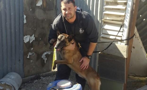 הכלב באק (צילום: דוברות חטיבת המשטרה)