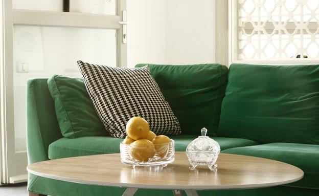 אנה גולדברג, ספה  (צילום: דרור סיתהכל)