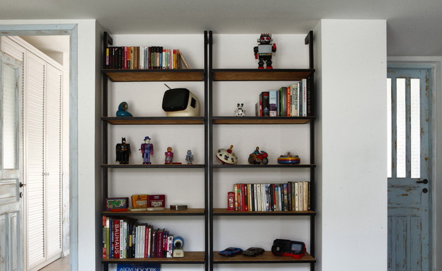 אנה גולדברג, ספרייה   (צילום: דרור סיתהכל)