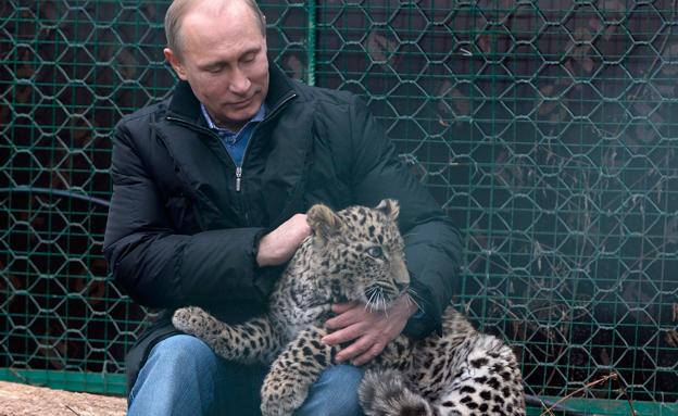 לוקה באספרגר? פוטין בגן החיות (צילום: AP)