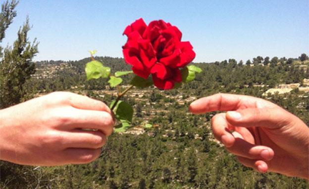 מה אתם יודעים על יום האהבה? (צילום: ערן בריינר)