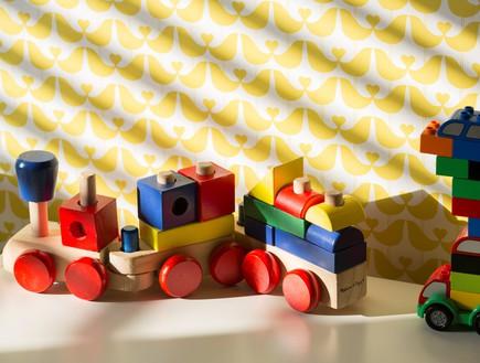רונית כפיר, צעצועים