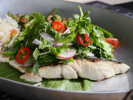 דג ים בגריל, סטיישן 9 (צילום: עודד קרני, אוכל טוב)