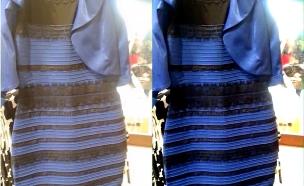 השמלה והצבע