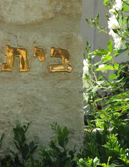 גליה בראון, בית  (צילום: גלעד רדט)