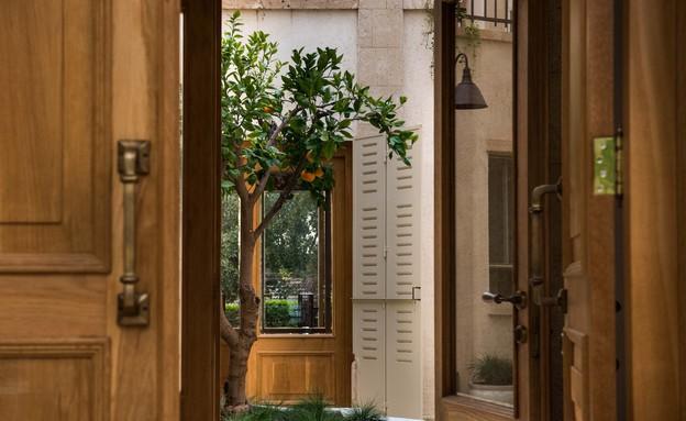 גליה בראון, דלת (צילום: גלעד רדט)