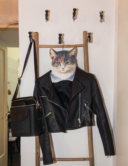 עומר ושירן מילר,סולם חתול גובה (צילום: אבישי פינקלשטיין)
