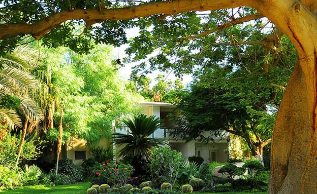 הגן הבוטני, עין גדי (צילום: eingedi.co.il, משרד התיירות)