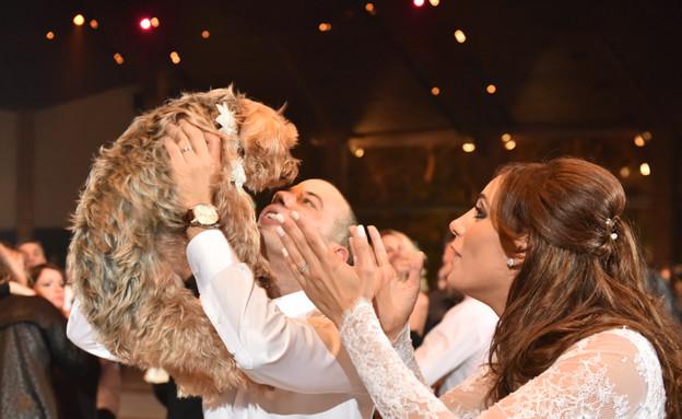 החתונה של ג'סי אלכס (צילום: יניב סופר)