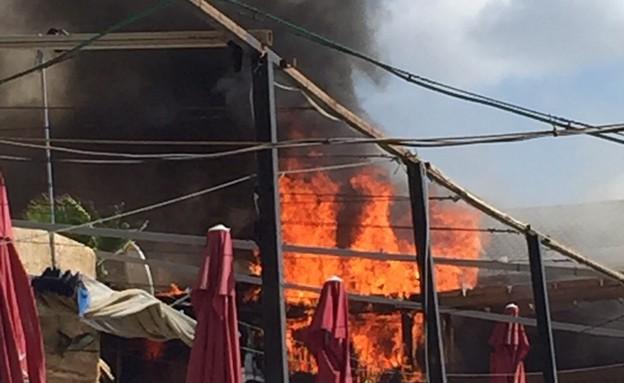 תיעוד השריפה בתכנית של ירון אילן (תמונת AVI: מתוך שישי שמח, ערוץ 24)
