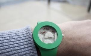 שעון נמלים, אפילו לא תדעו מה השעה (צילום: analogwatchco.com)