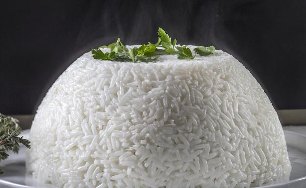 תבשיל בקר בפטריות ויין אדום בכיפת אורז - סגור (צילום: אנטולי מיכאלו, אוכל טוב)