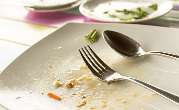 מנהגי אירוח, תשאירו משהו בצלחת (צילום: Thinkstock)