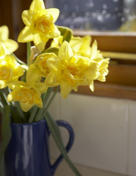 מנהגי אירוח, תשכחו מפרחים צהובים (צילום: Thinkstock)