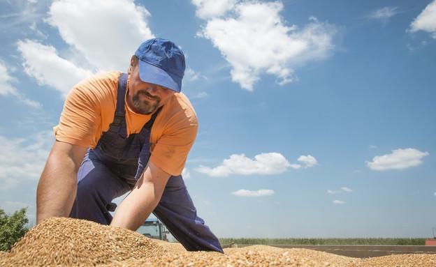 חקלאי עובד בשדה (אילוסטרציה: thinkstock)