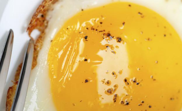 ביצת עין (צילום: אימג'בנק / Thinkstock)
