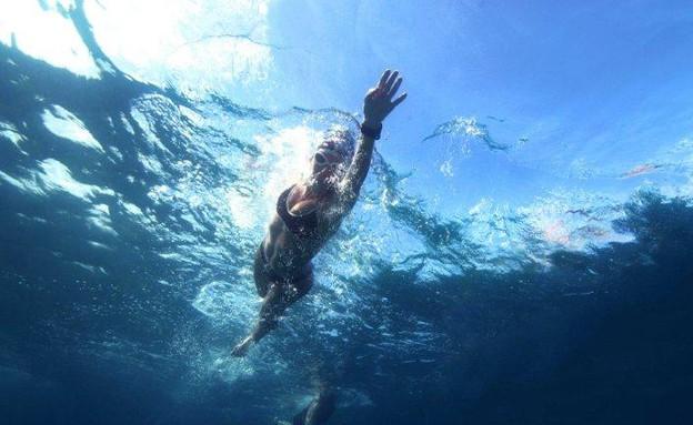 שחיית IT (צילום: תומר אבני - צלם תת-מימי)
