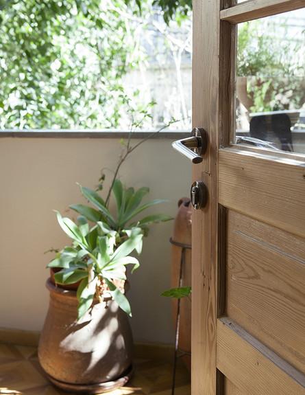 קרן אשד, עציץ גובה (צילום: הגר דופלט)