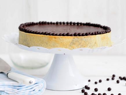 פאי שוקולד  (צילום: שרית נובק - מיס פטל, אוכל טוב)