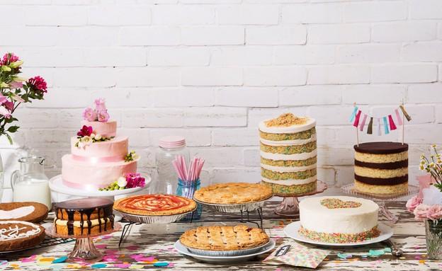 נולה עוגות שכבות (צילום: שרית גופן,  יחסי ציבור )