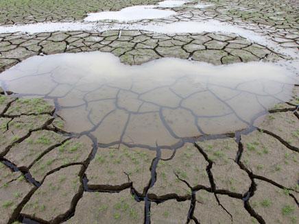 ההתחממות הגלובלית במספרים - כך זה נראה (צילום: רויטרס)