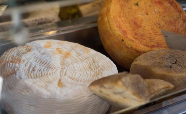 גבינות צפת (צילום: נמרוד סונדרס,  יחסי ציבור )