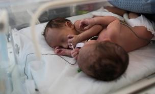 ההמלצה: חיסון נשים בהריון (צילום: יונתן סינדל, פלאש 90)