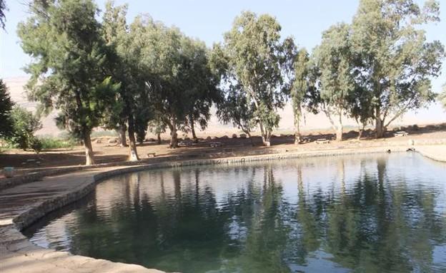 מאה הדברים הטובים בישראל - עין מודע, פארק המעיינות (צילום: אתר מפה)