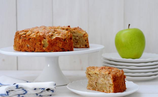 עוגת תפוחים  (צילום: שרית נובק - מיס פטל, אוכל טוב)