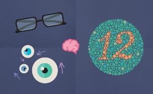 עובדות על עיניים